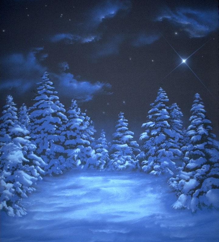 Snowstars web.jpg