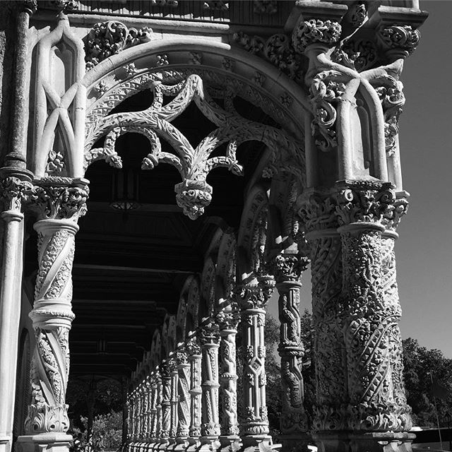Colonnade at the Bussaco Palace Hotel in Lusa, Portugal 🇵🇹 #Hotel #palace #bussaco #buçaco #portugal #columns #colonnade #gothic #architecture #architecturephotography #bne #contrast #shotwithiphone #oldworld #landmark #historic #fivestar