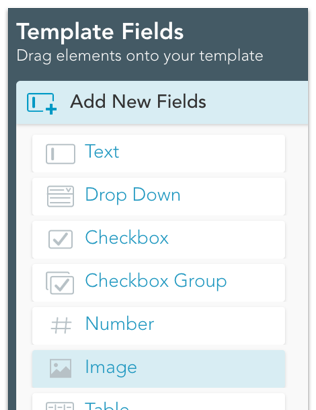template fields table