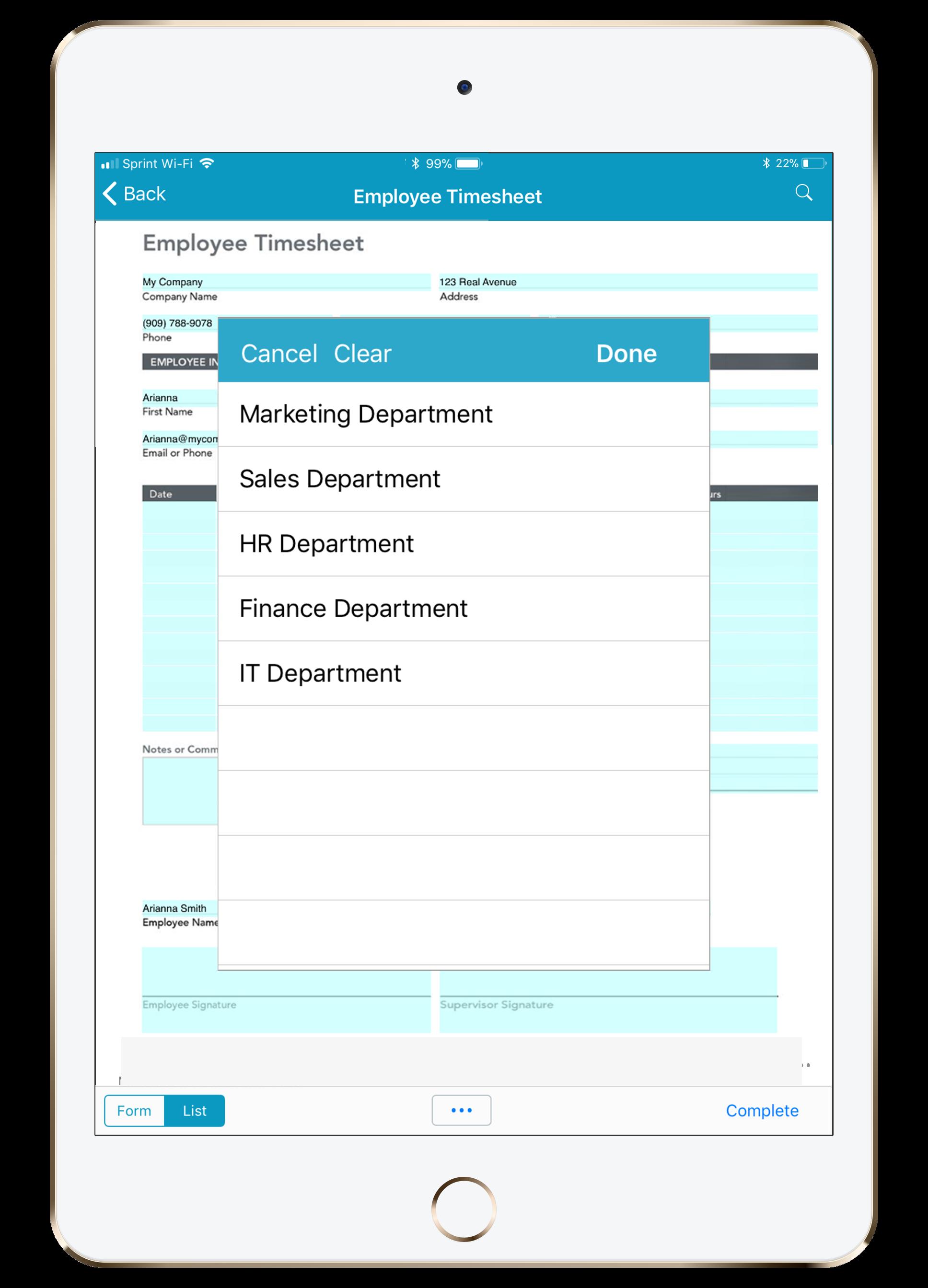 Employee Timesheet on iPad