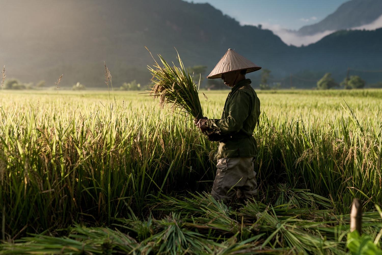 ThailandPhotos-052.jpg