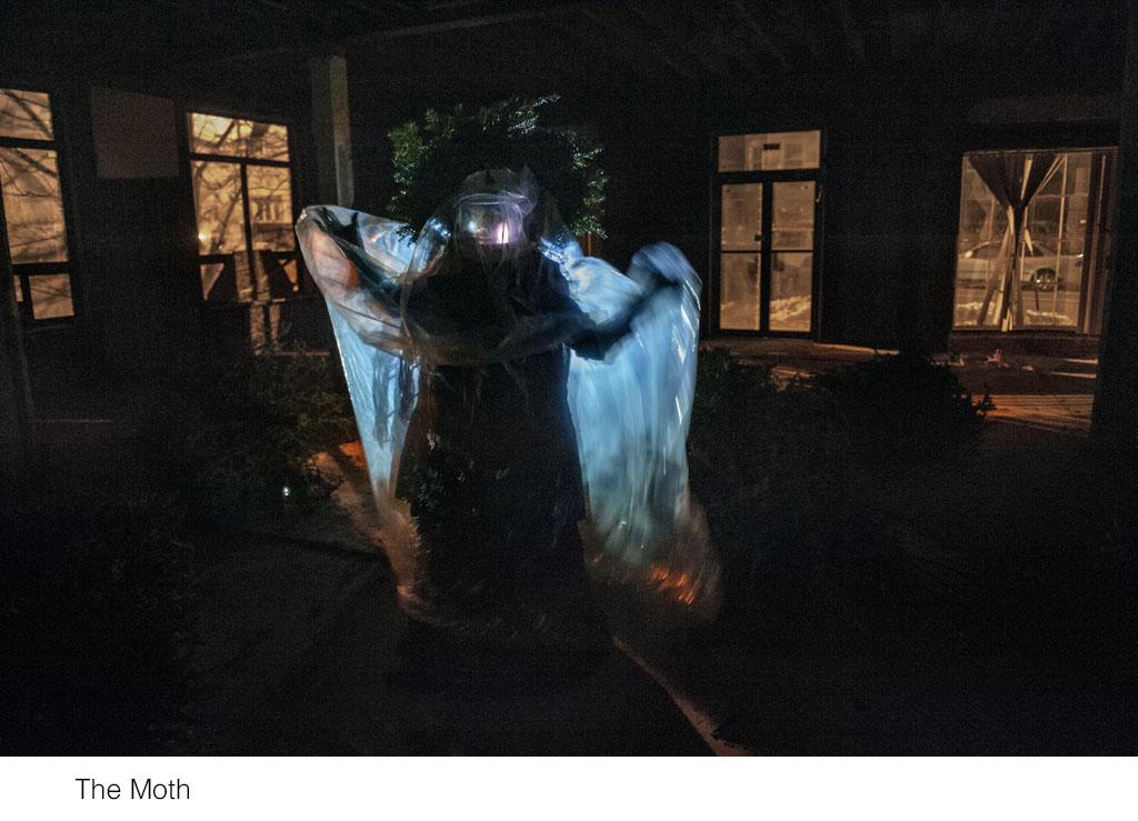 the_moth.jpg