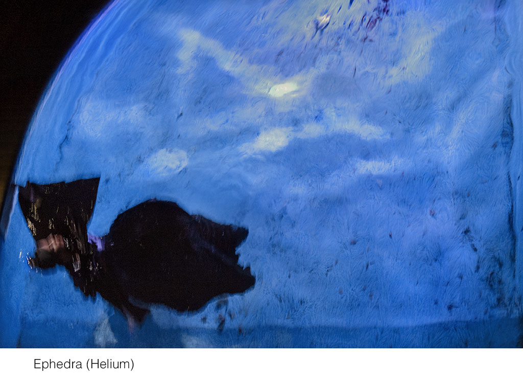 ephedra_helium.jpg