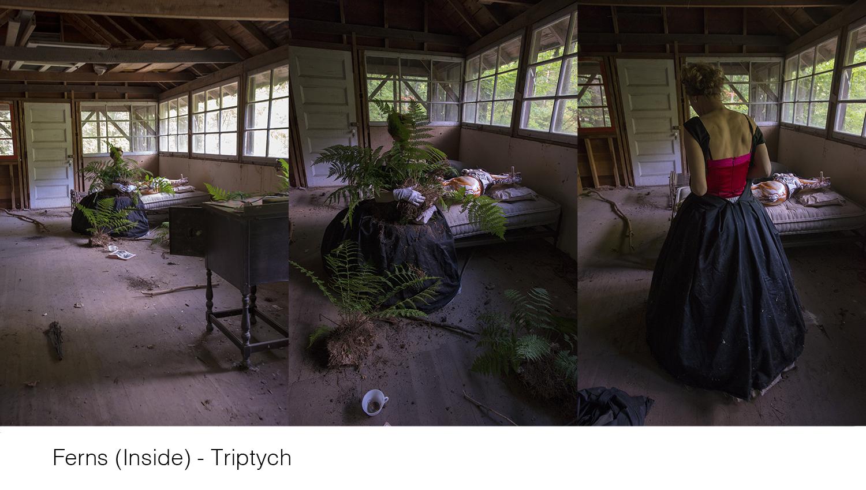 Ferns (Inside) -Triptych_title_WEB copy copy.jpg