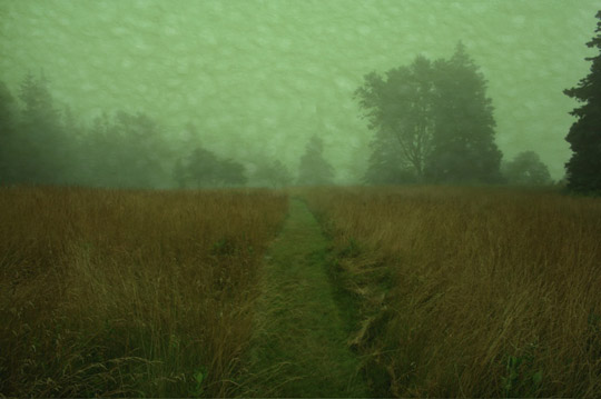 """Fog 4,  photograph on watercolor paper, 17"""" x 21"""""""