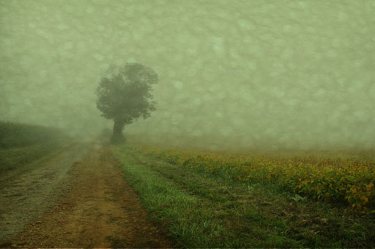 """Fog 8,  photograph on watercolor paper, 18"""" x 22"""""""