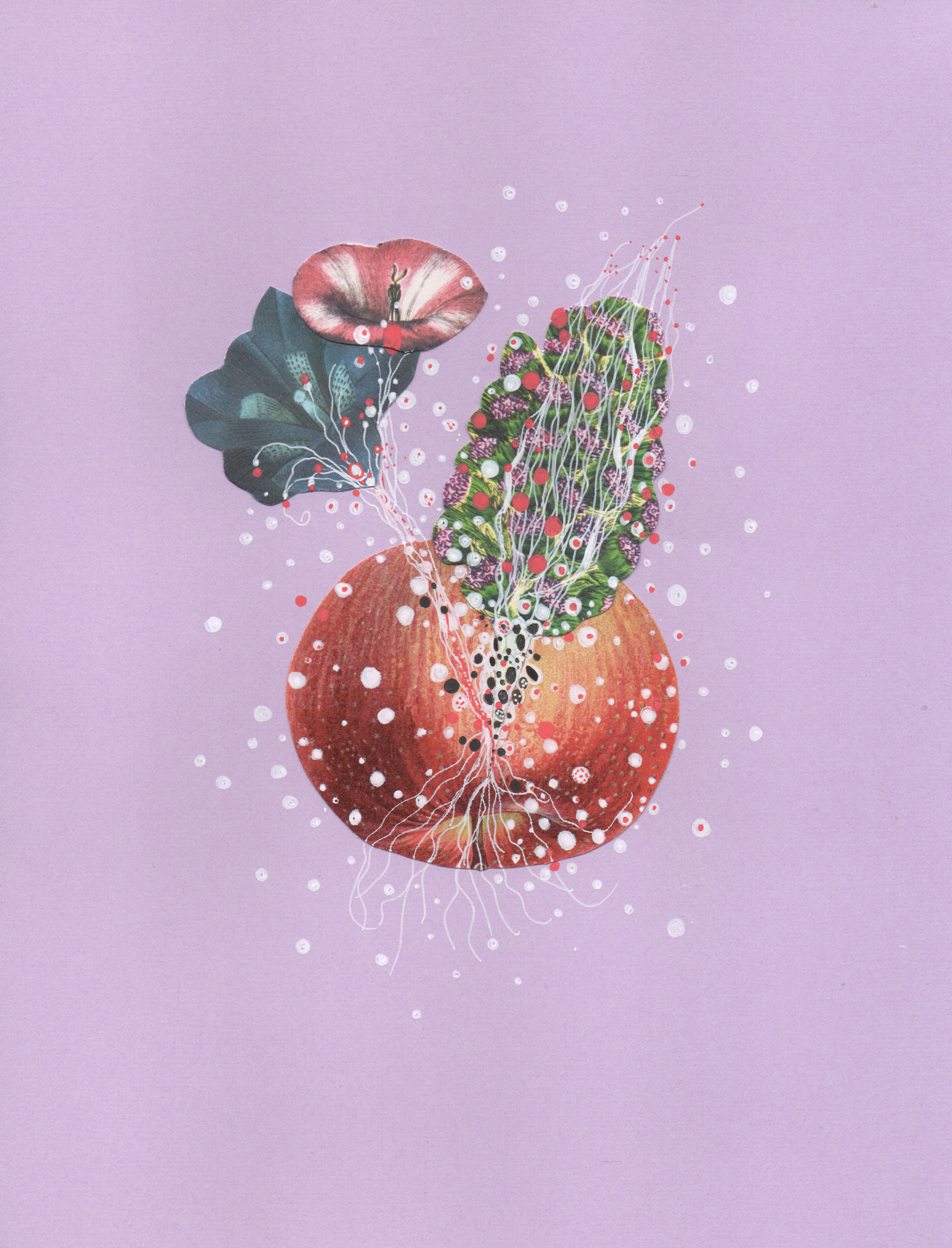 "Lavender Sea Apple , ink and found collage on paper, 11"" x 8 1/2"", $225"