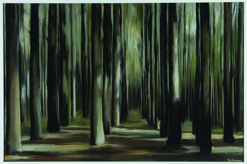 """Andrea Tishman, Rochester Woods , pastel and charcoal on sanded paper, 31"""" x 43"""" framed, sold"""