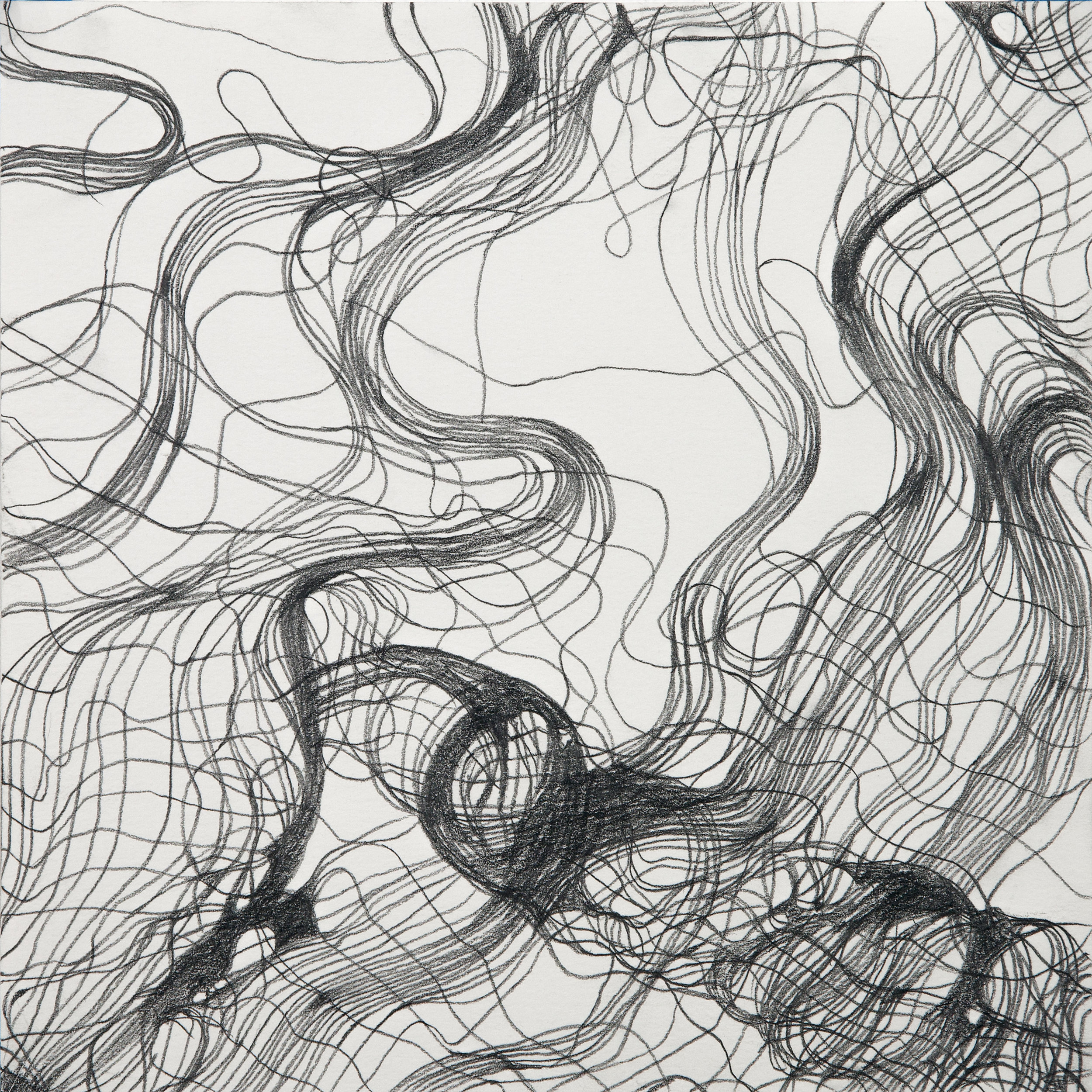 "Lynda Schlosberg , Interwoven Study 1 , graphite on paper, 16"" x 16"" framed, $450"