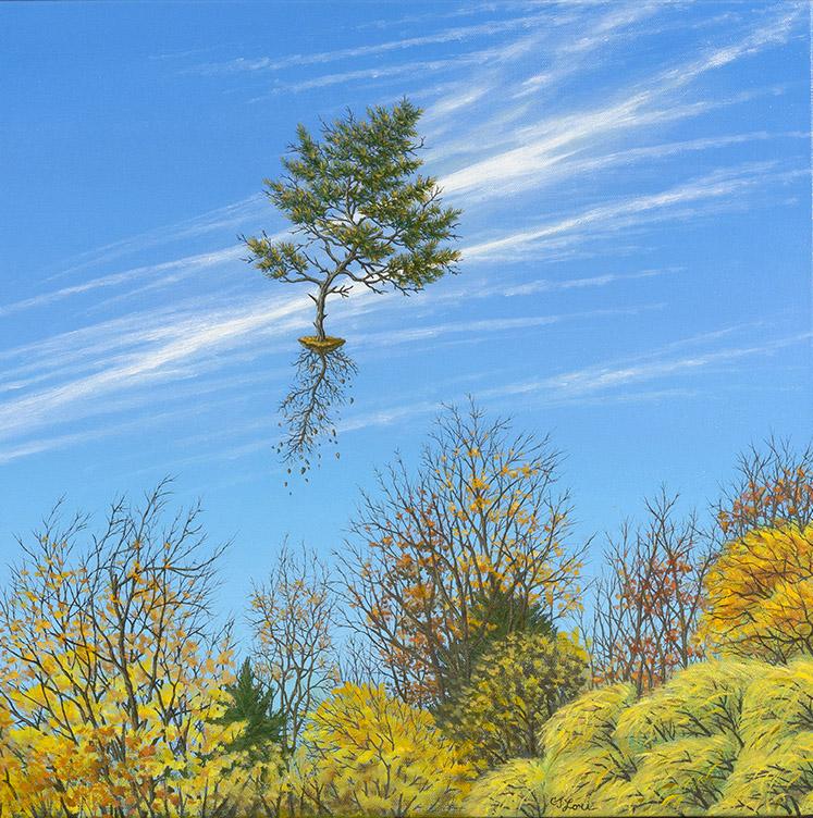 "November Leaves , oil on canvas, 20"" x 20"", $2,800"