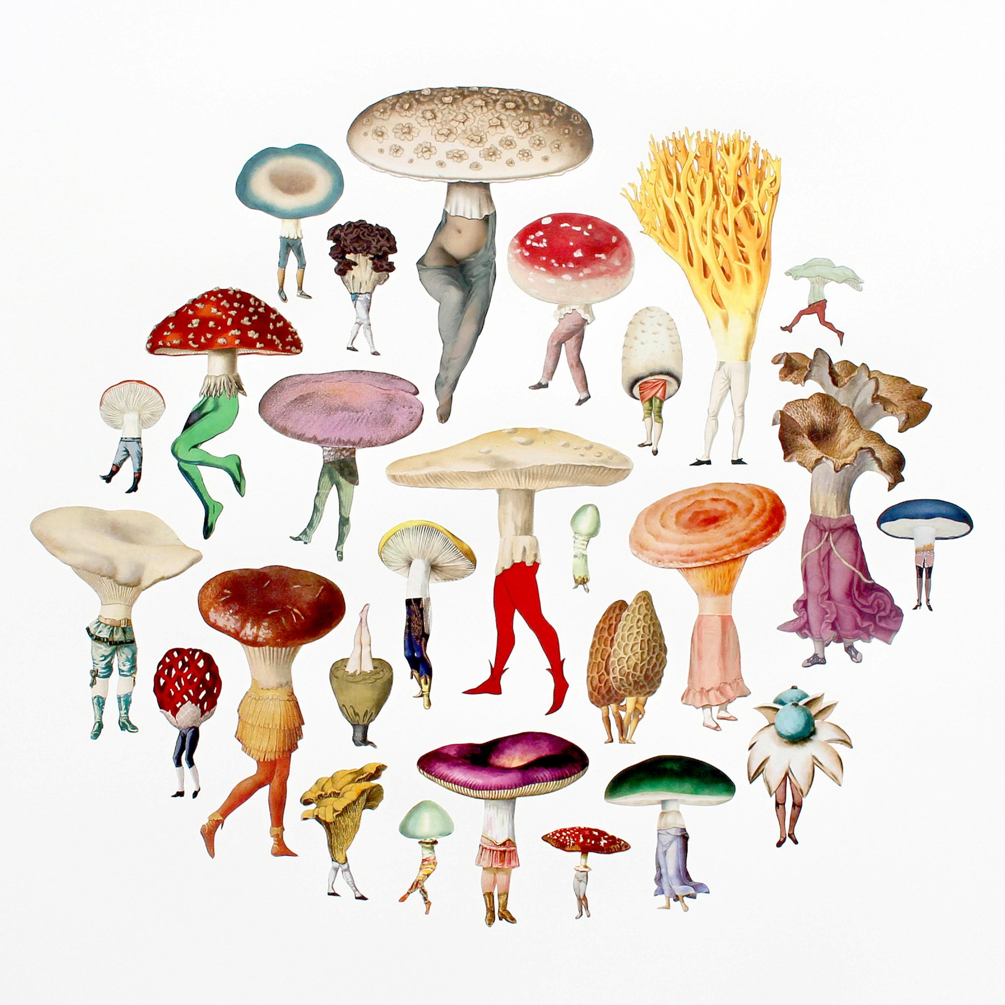 Amy Ross , Mushroom Patch , collage on paper
