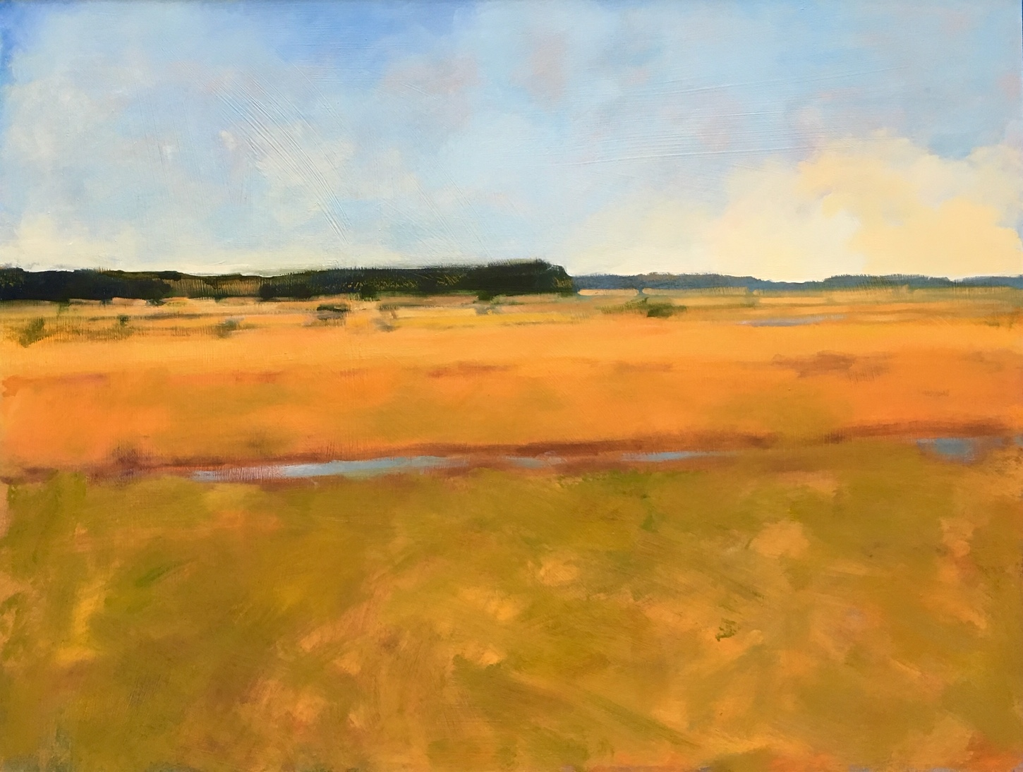"Heather Pilchard ,  Rising Tide , oil on board, 25 1/2"" x 33"" framed, $2,000"