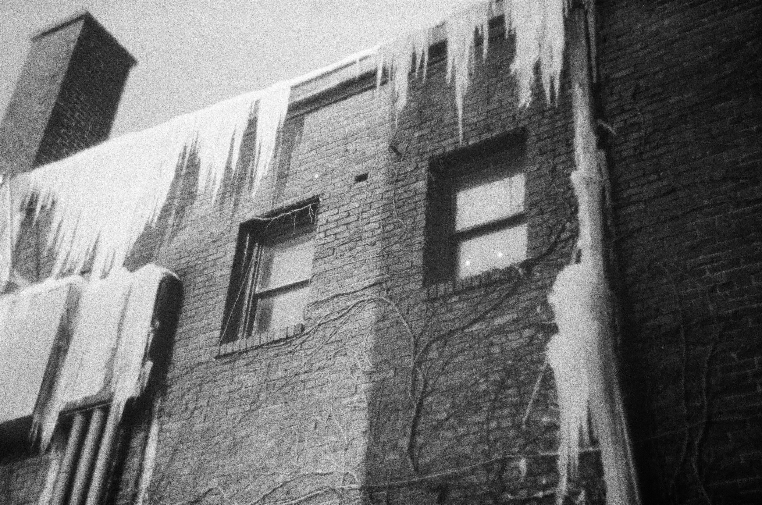 icicles_behind_mill.jpg