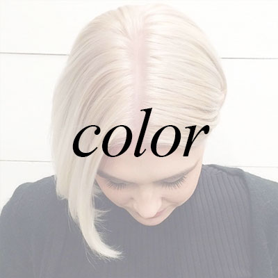 Products for Colored Hair at HAUS Salon