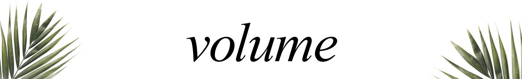 Volumizing Products at HAUS Salon