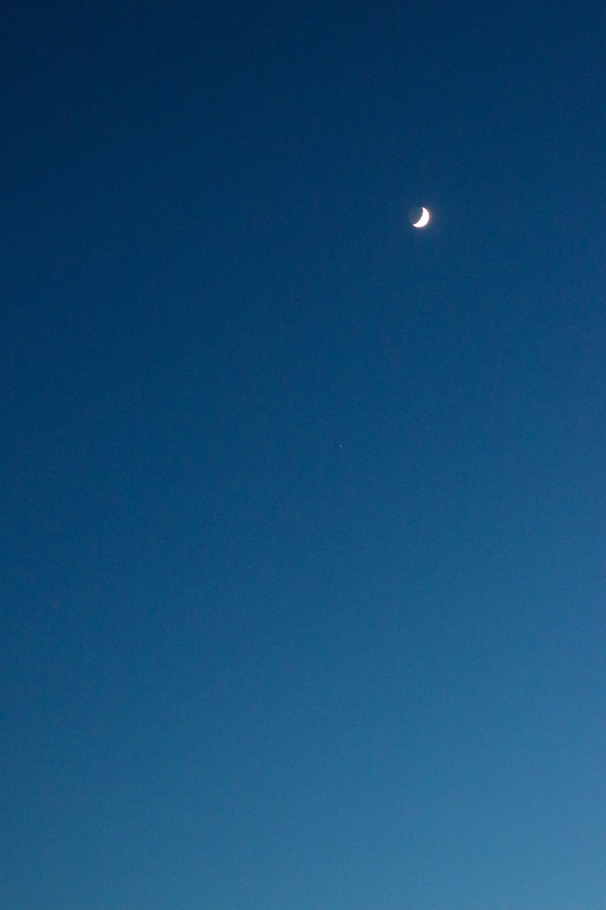 Summer Moon, Indiatlantic Beach, Florida