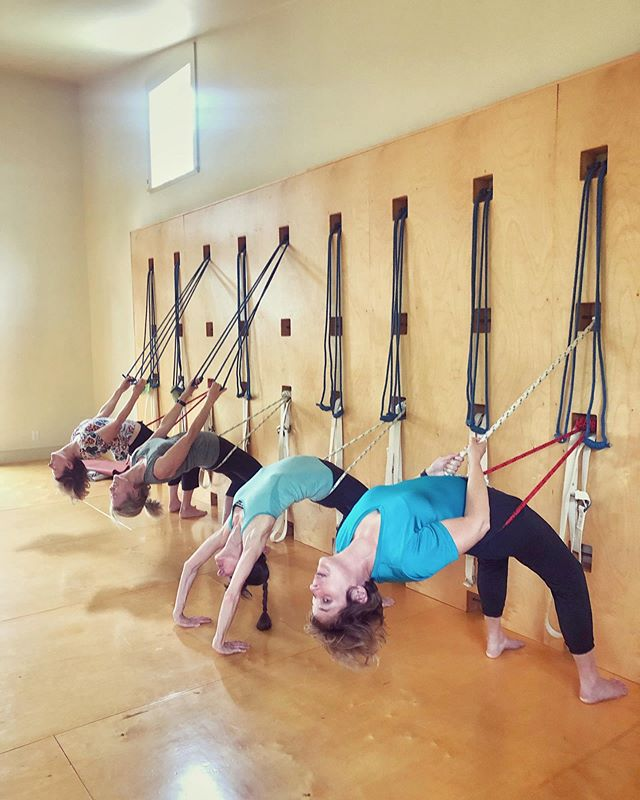 #UrdhvaDhanurasana On the #yogaropewall 👏🏼 #propsforprops #tryiyengar #iyengaryoga #yoga #yogainspiration #yogaforlife #iyengarmethod #backbend #upwardbowpose #backbendprep #yogaprops #yoginisofinstagram #yogini