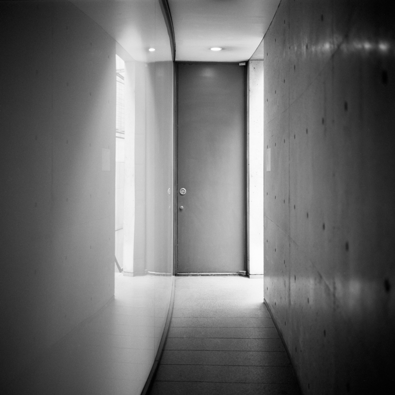 TadaoAndo_5.jpg