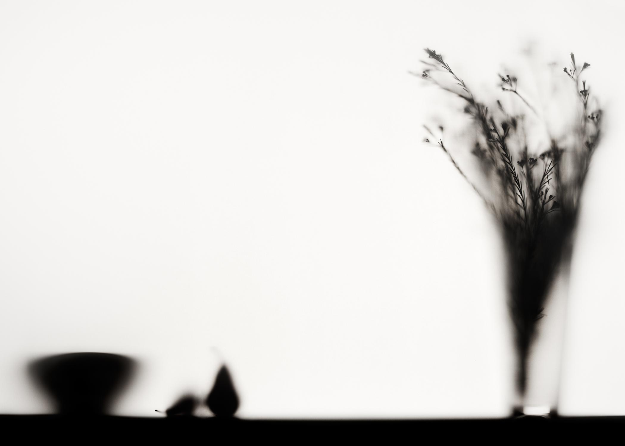 still life-06.jpg