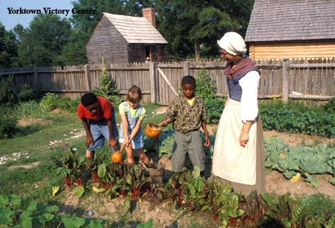YVC-visitors_water_farm_garden_with_gourds.jpg