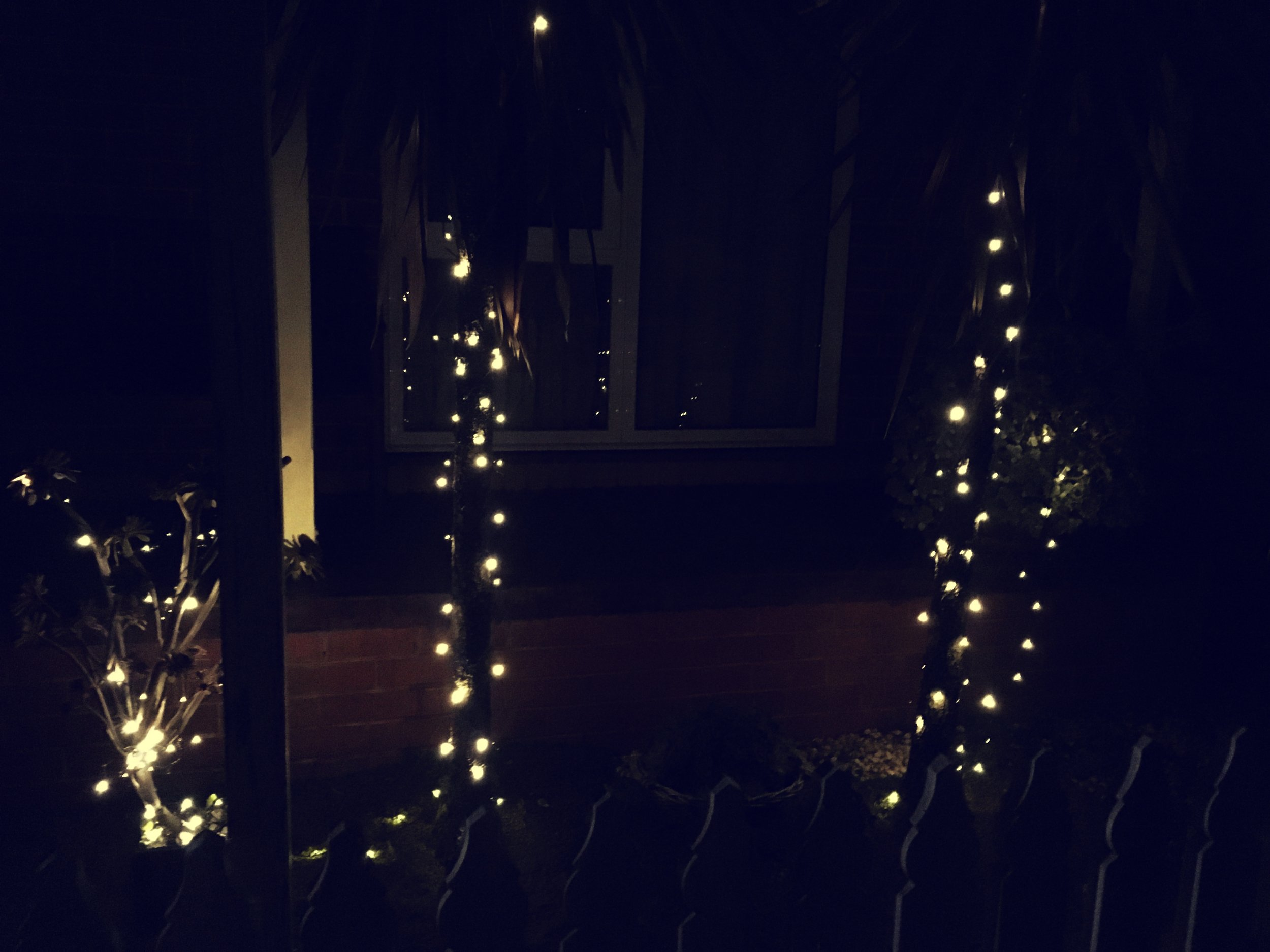 Christmas 'Fairy' Lights