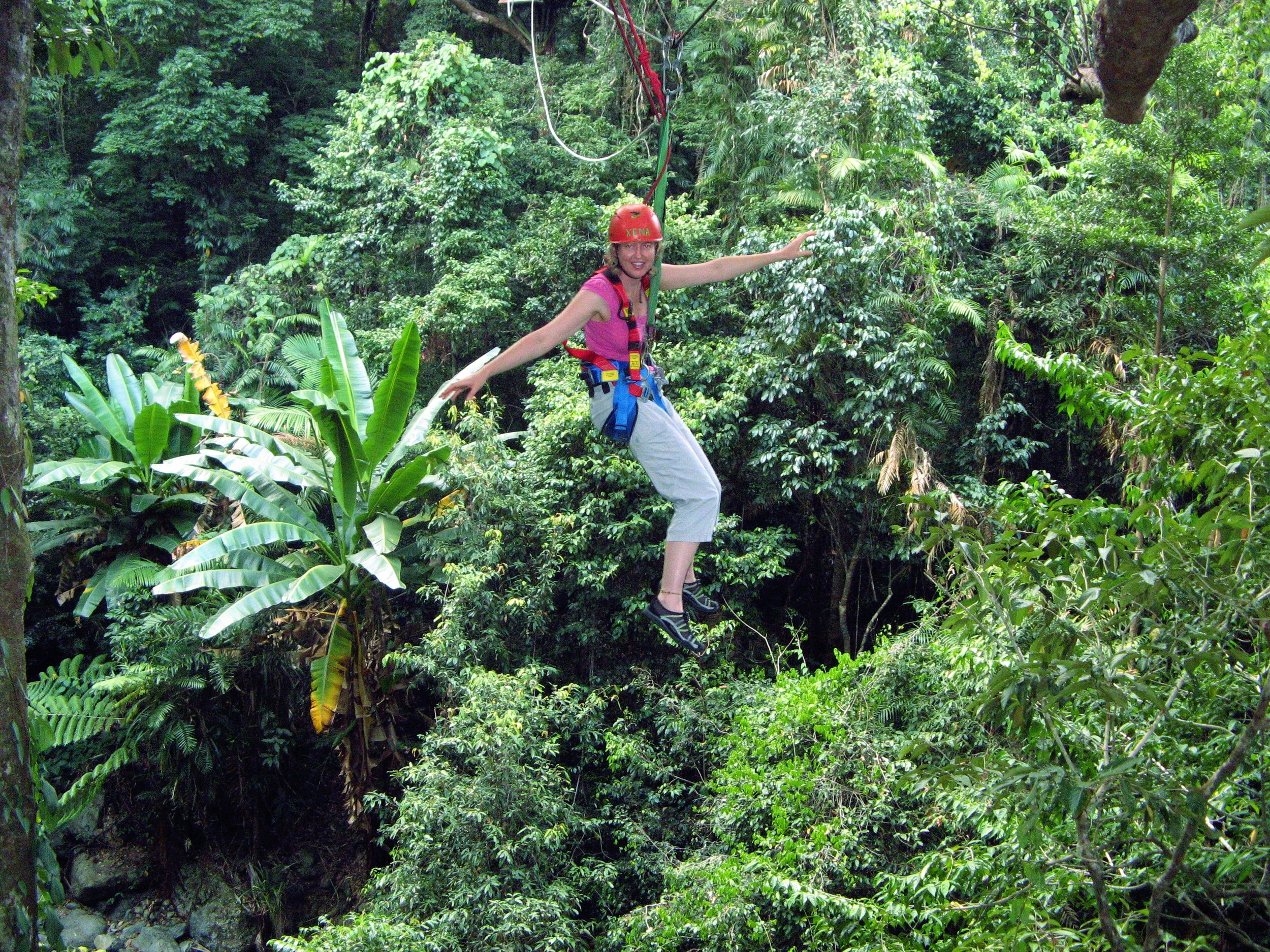 JUNGLE SURFING IN THE DAINTREE FOREST, QLD, AUSTRALIA, SEPTEMBER, 2009