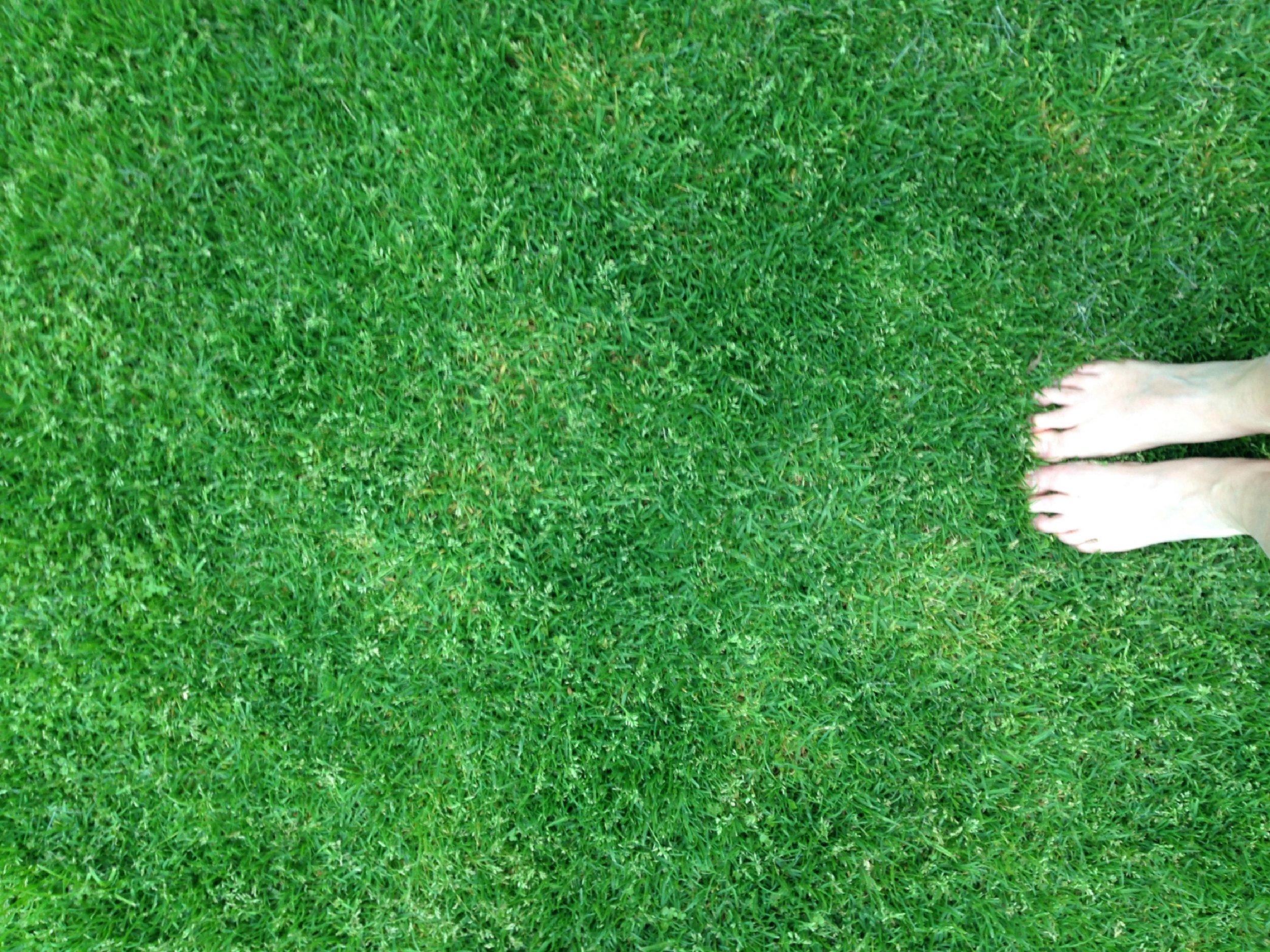 WALK ON GRASS FOR GROUNDING