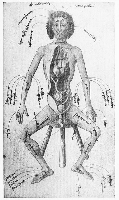 Medical imagery from 15th century | Sourced via publicdomainreview.org