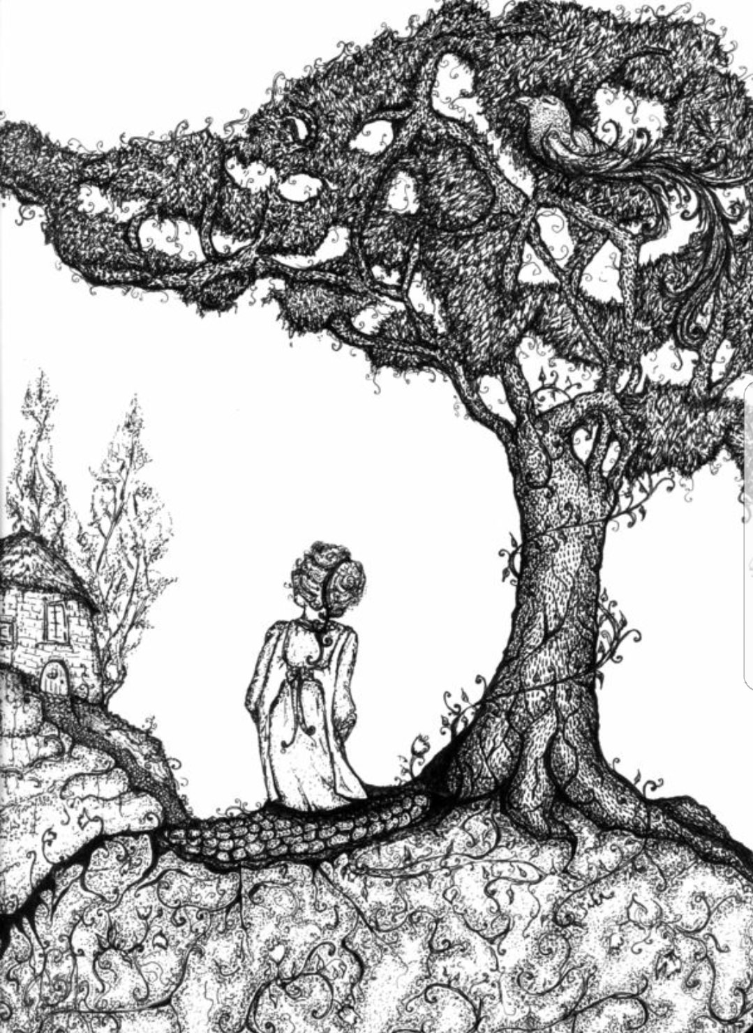 Illustration from the Juniper Tree, Grimm's Fairy Tales | sourced via Pinterest