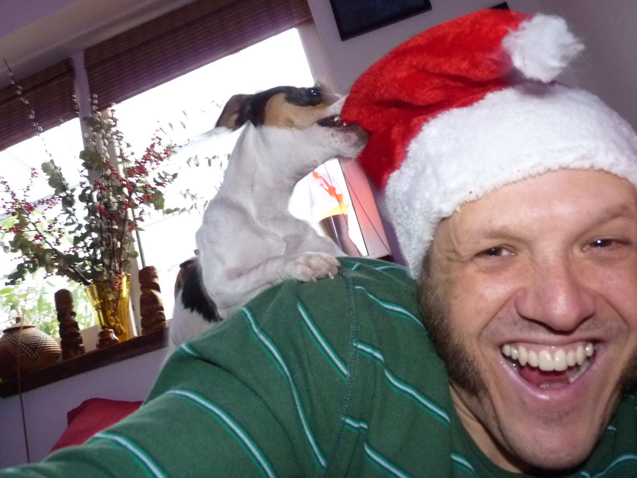 I hate Santa Hats! Do you know why? (Don't worry, there is no right or wrong answer)