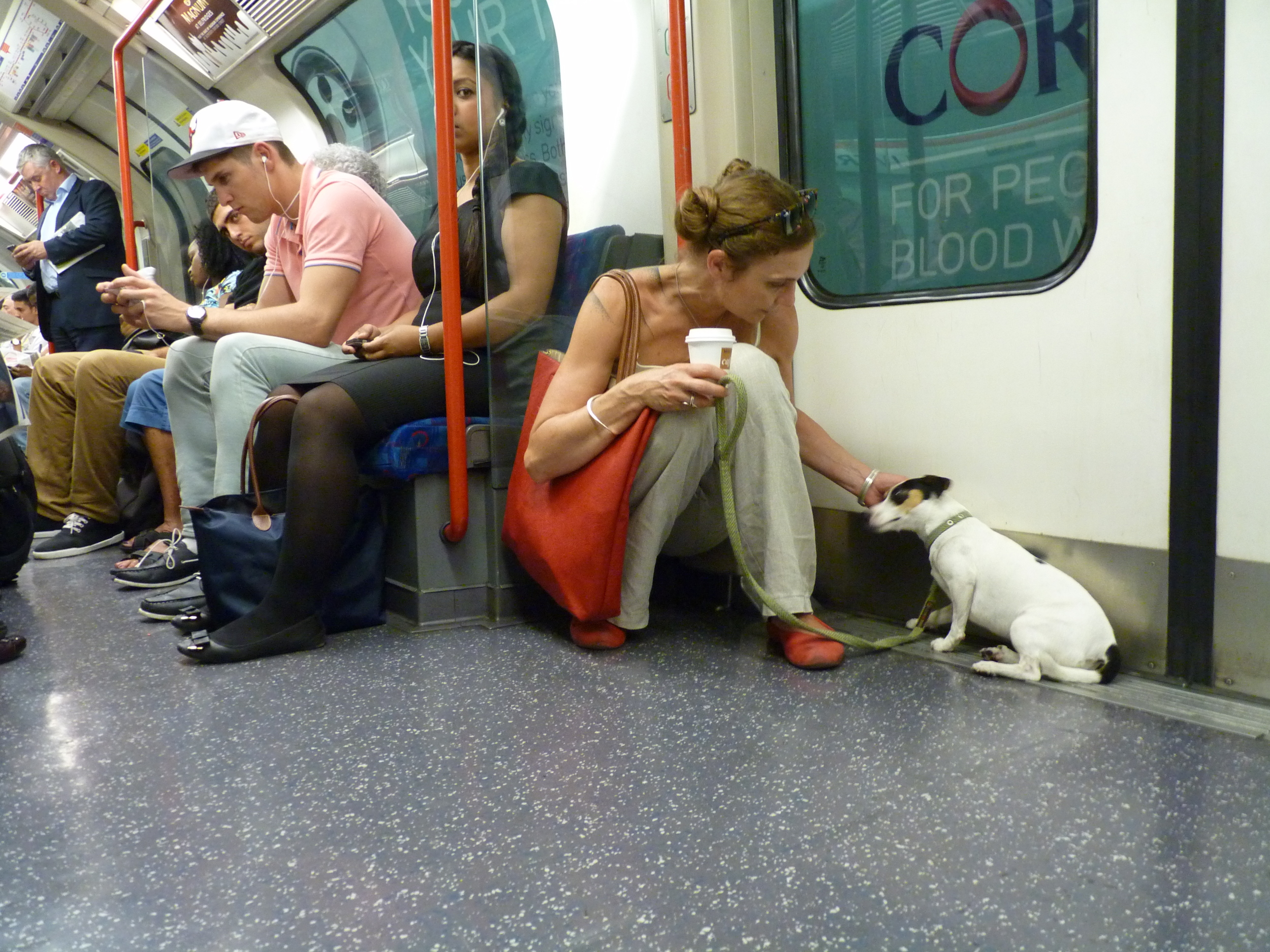 I like the Tube when it's not too hot, not too crowded and when Olive Mommy gives me scritchees.