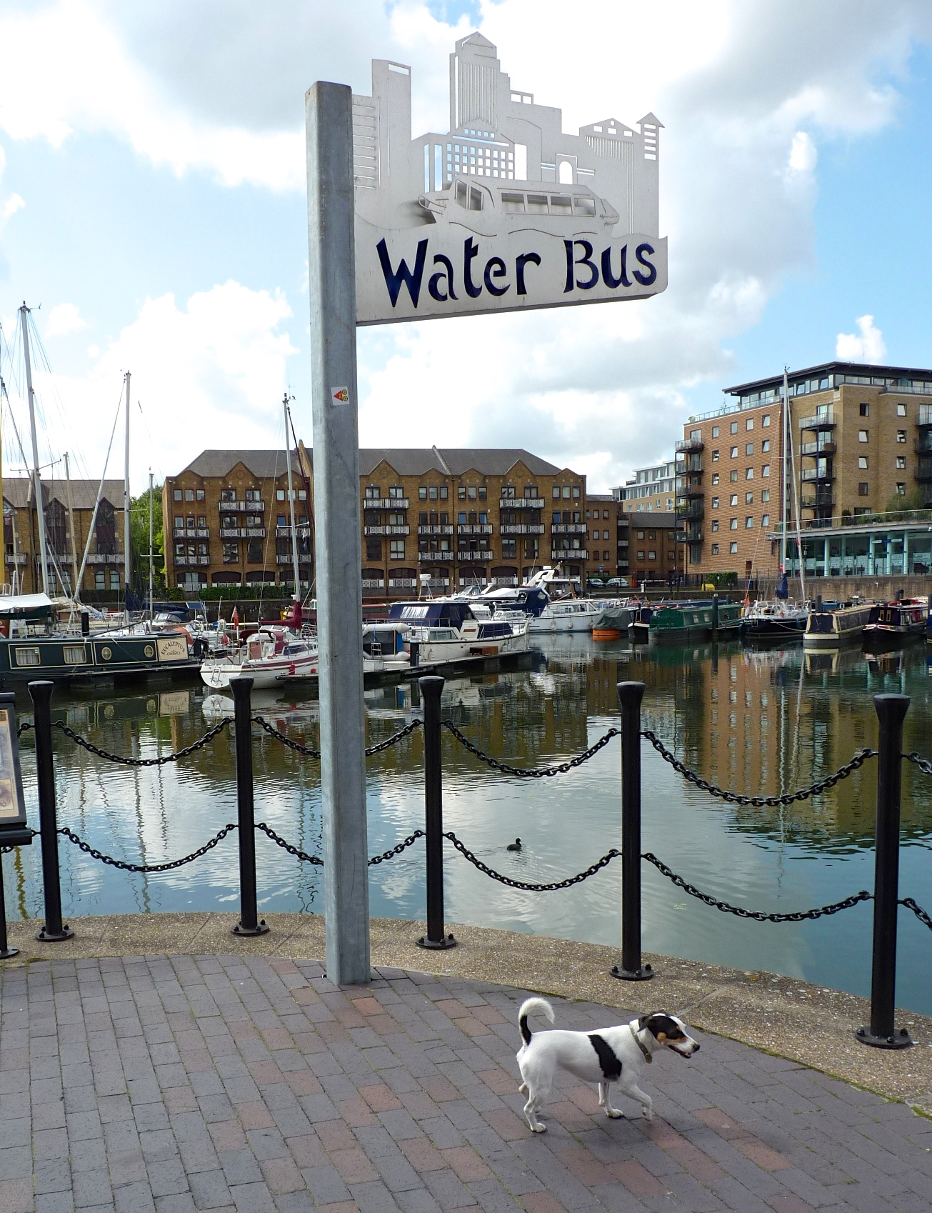 Now if you'll excuse me, I have a bus to catch-- a water bus!