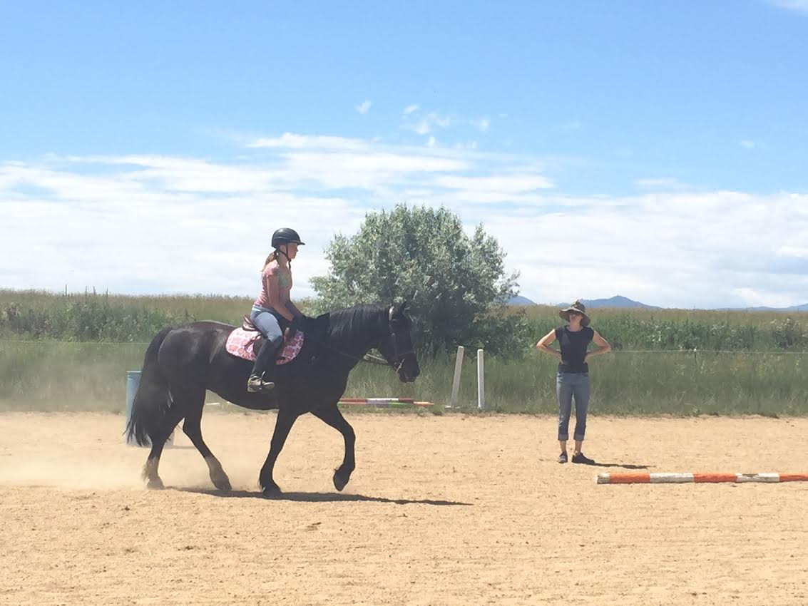 Reviews and Testimonials for Cathy Lauderbaugh as a horse trainer and horseback riding instructor in Boulder Colorado.