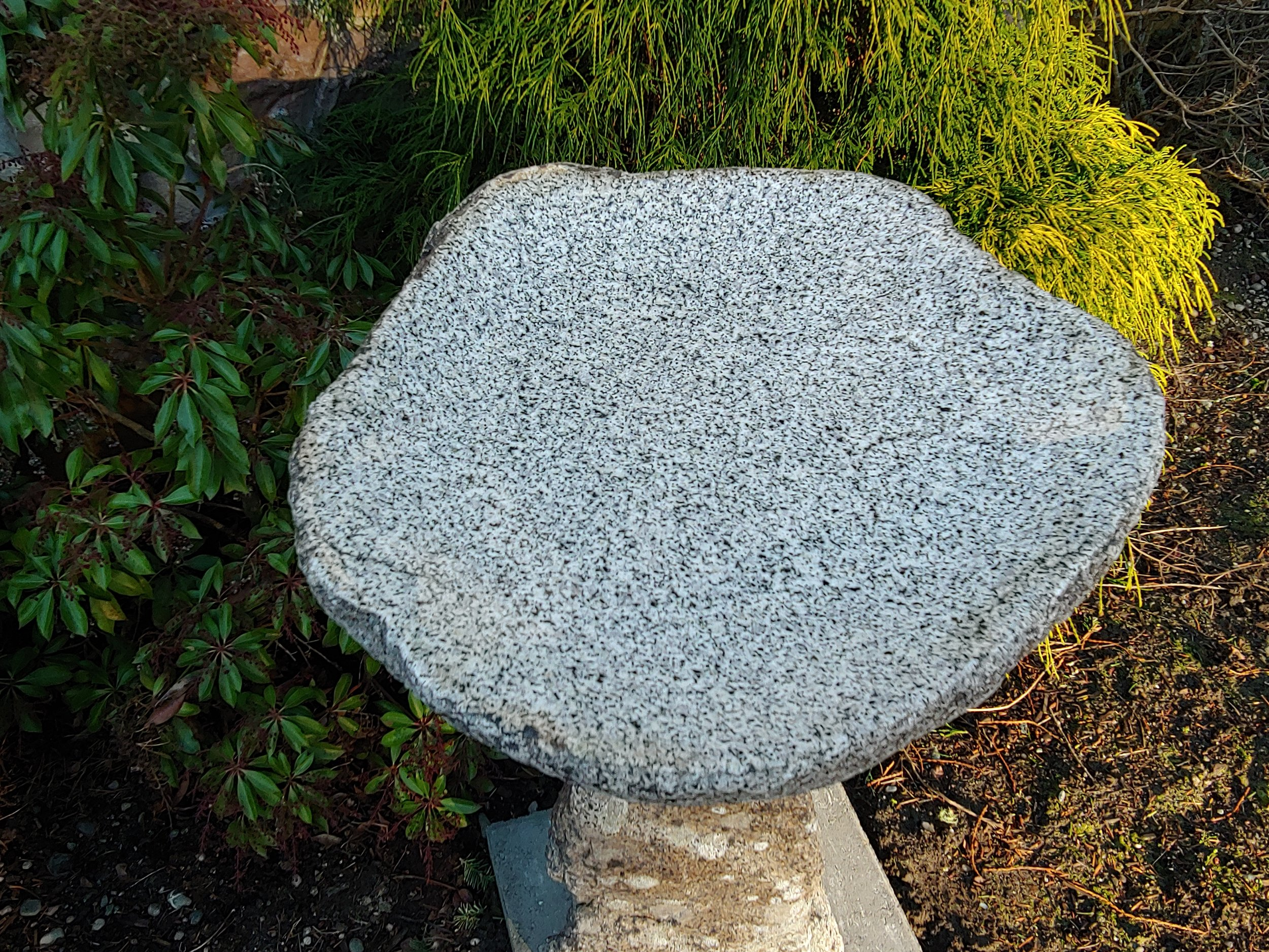 Polished Granite Bird Bath Top