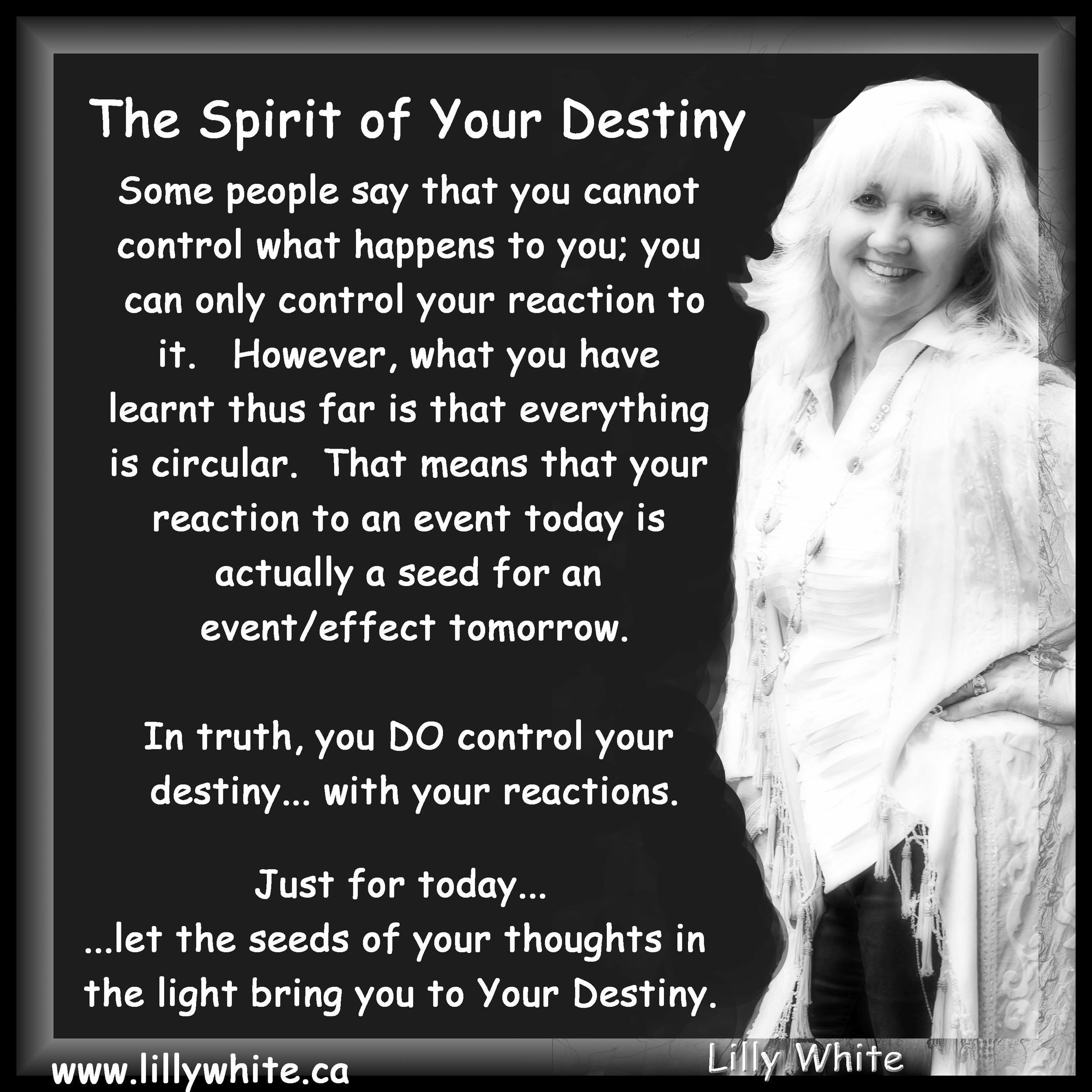LW Spiriit of Destiny.jpg