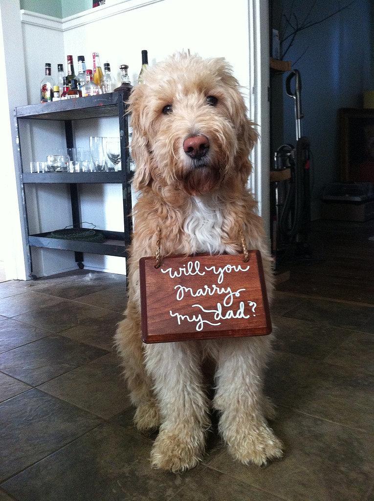 1-Dog-Proposal.jpg