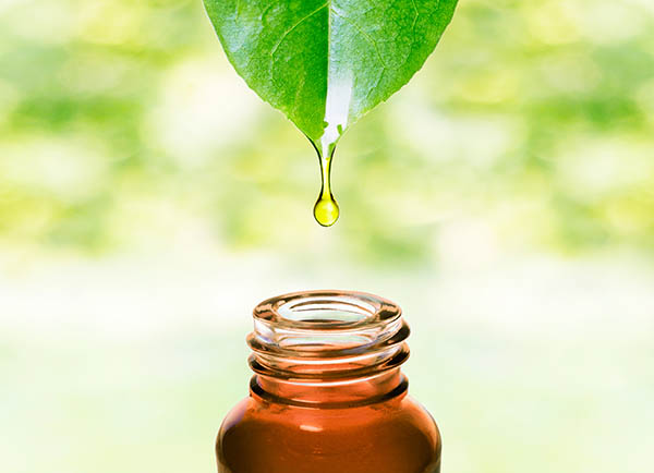 Quality oils are 50-70x more potent than herbal remedies-a little goes a long way!