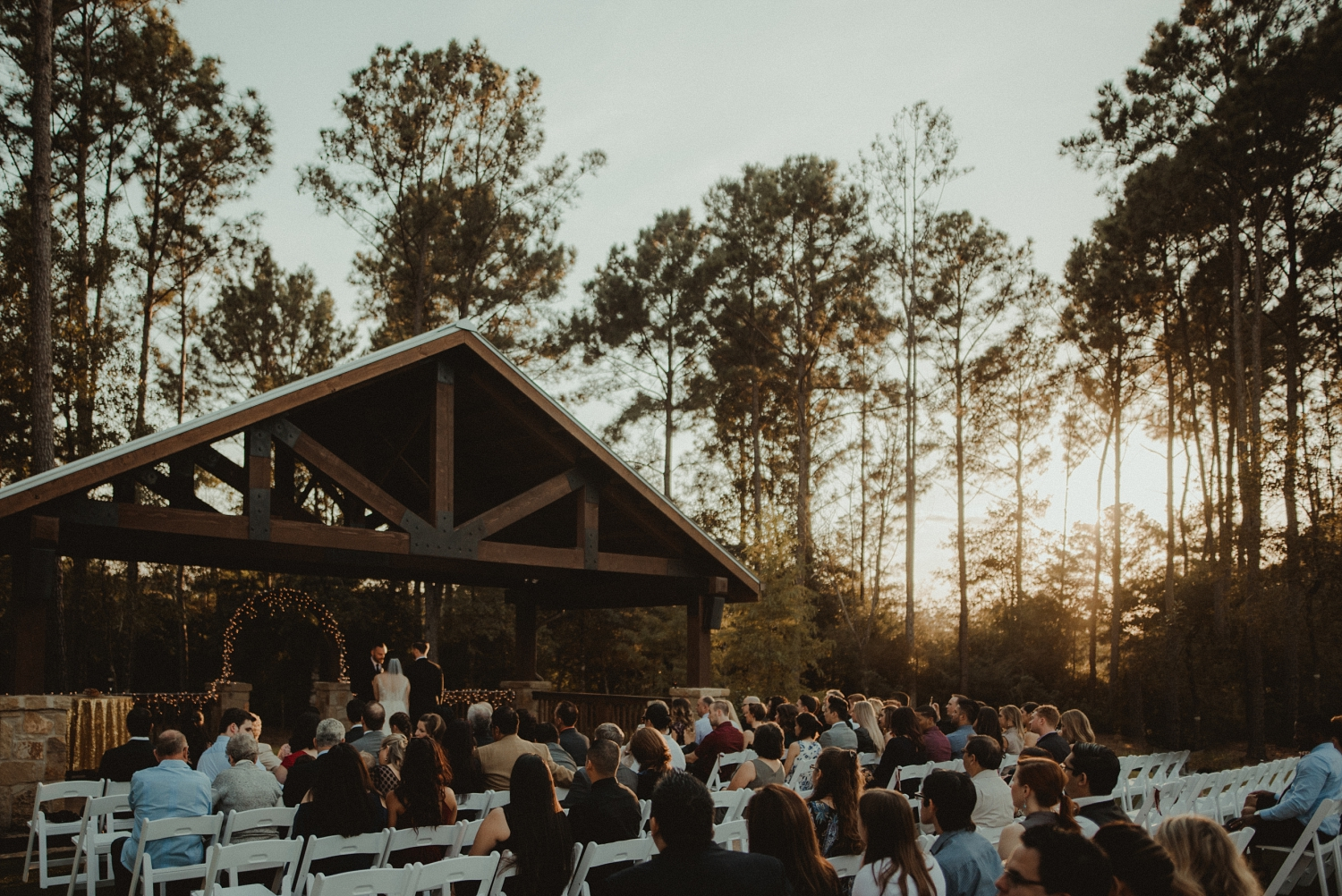 Wedding in the pine trees