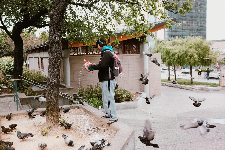 Man Feeding Birds in San Francisco