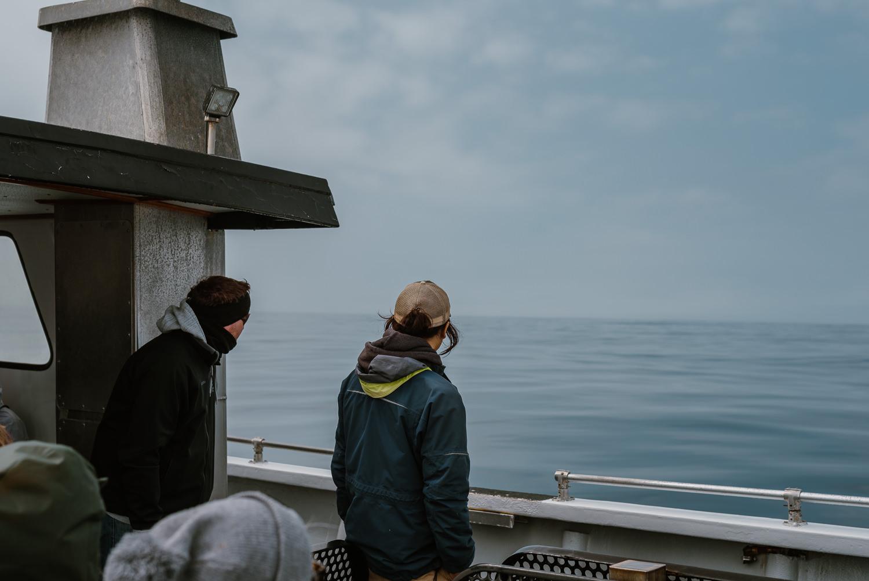 Monterey Bay Whale Watch Tour