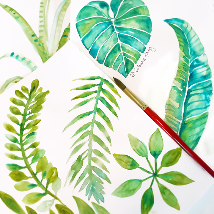 Tropical leaves illustration by Corinne Haig. Copyright © Corinne Haig. www.corinnehaig.com