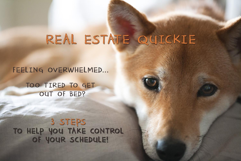 RealEstateQuickie_TakeControlSchedule.jpg