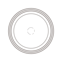 IconicRealLogo_1117_transp_SMALL.png