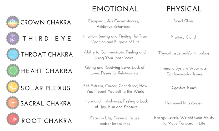Heal Your Chakras, Heal Your Life! Learn more about a personal chakra healing session with Holistic Nutritionist, Nicole Glassman.