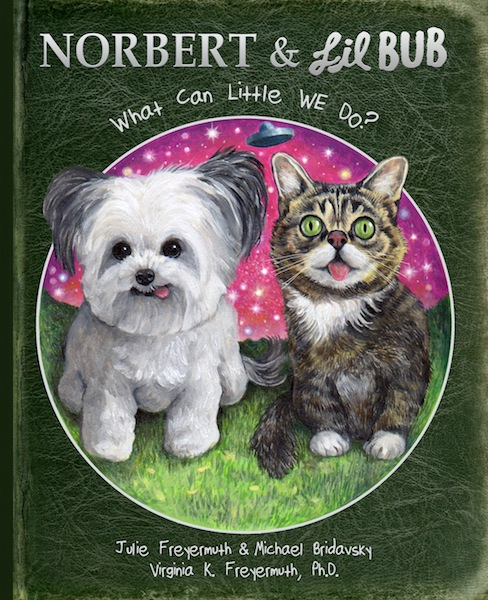 OVER: Norbert Book 3