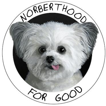 NorbertHoodForGood_PaintedLogo.jpg