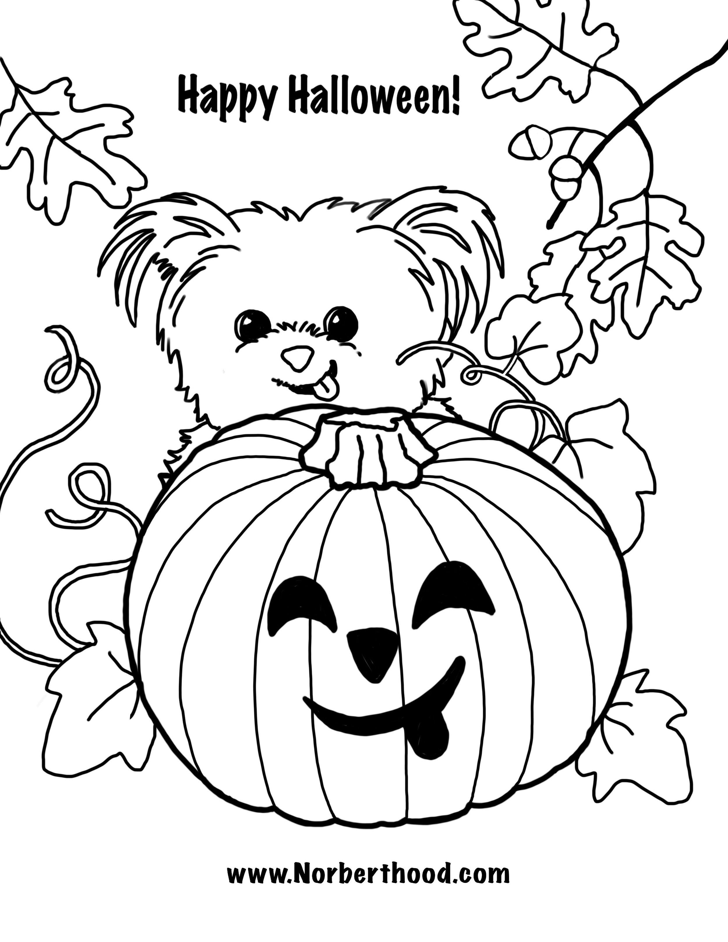 Norbert_Happy Halloween.jpg