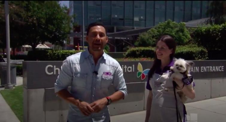Univision, June 2017