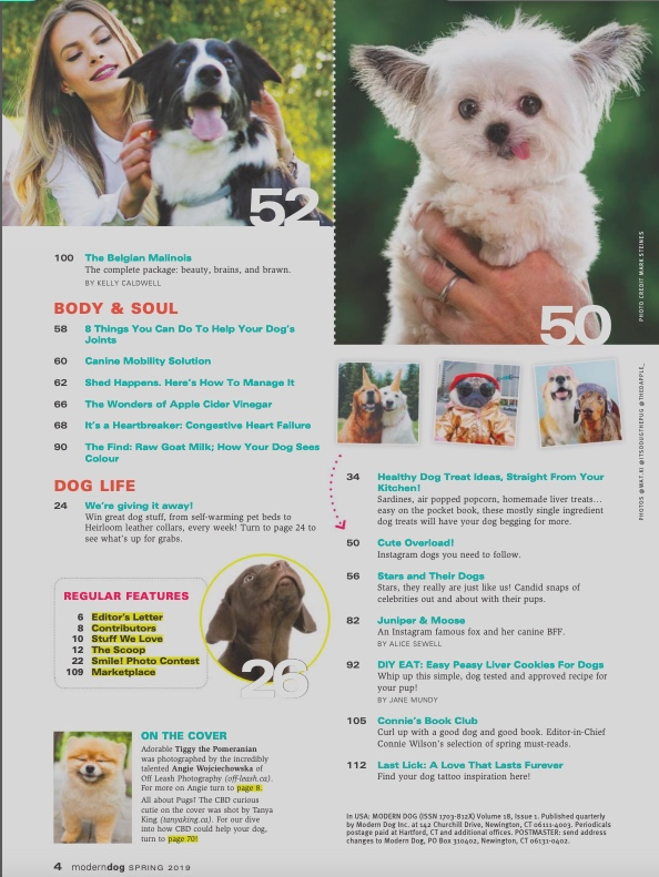 Modern Dog Magazine, March 2019