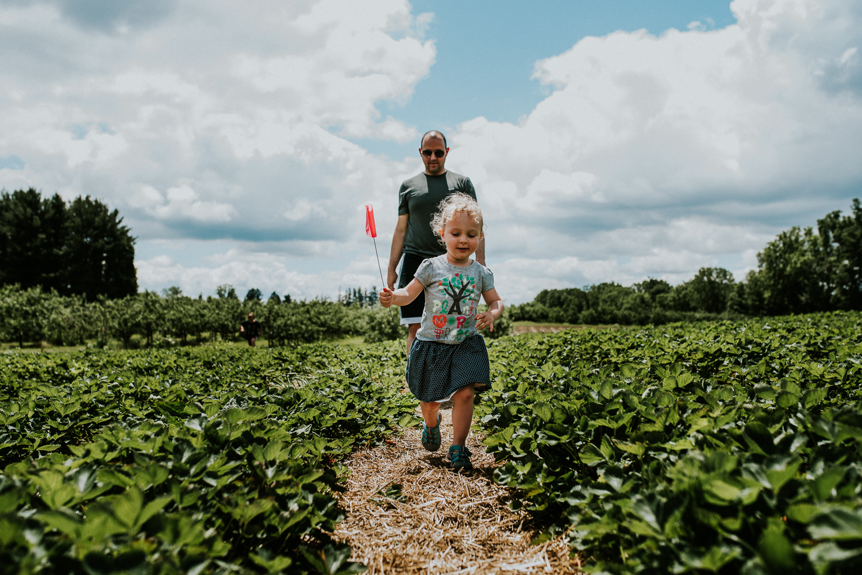 Strawberry Picking-12.jpg